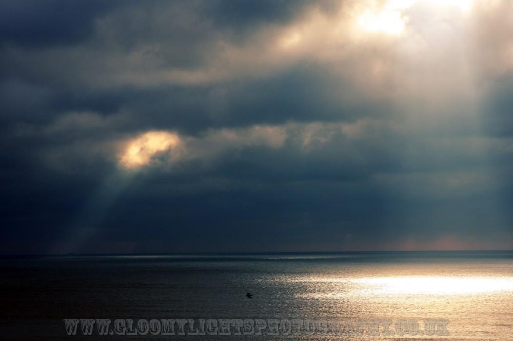 sunsea (2)