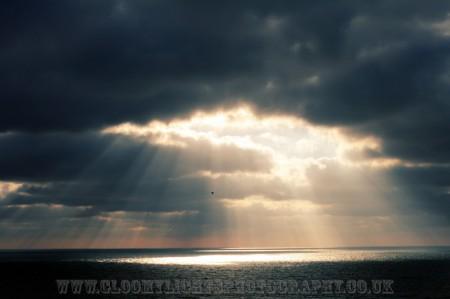 sunsea (6)